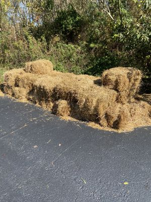 FREE FREE FREE BAILS OF STRAW for Sale in Lawrenceville, GA