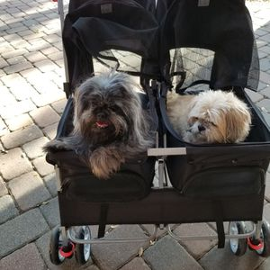 Double Dog Stroller for Sale in Largo, FL