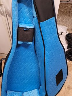 Reunion Blues Gigbag for Sale in Tigard,  OR