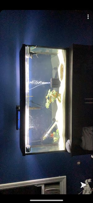 55 Gallon fish tank, stand and filter and lid for Sale in Mentor, OH