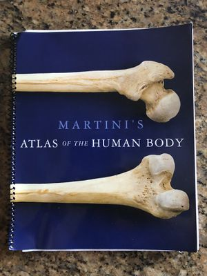 Martini's Atlas of the Human Body for Sale in Fontana, CA