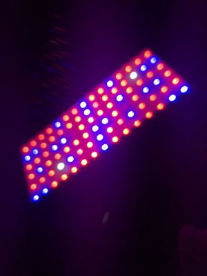 900w grow light for Sale in Escondido, CA