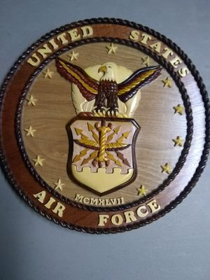 Hand carved Air Force Plaques for Sale in Hermon, ME
