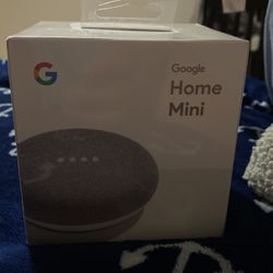 Google -Home Mini for Sale in Haines City,  FL