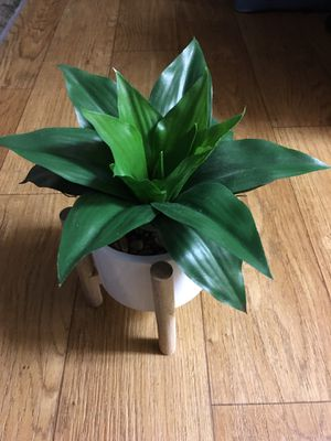 Fake Plant With Stand for Sale in Glendale, AZ