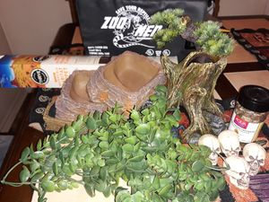 Reptile items for Sale in Irving, TX