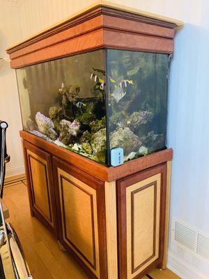 Fish tank aquarium for Sale in Oak Lawn, IL