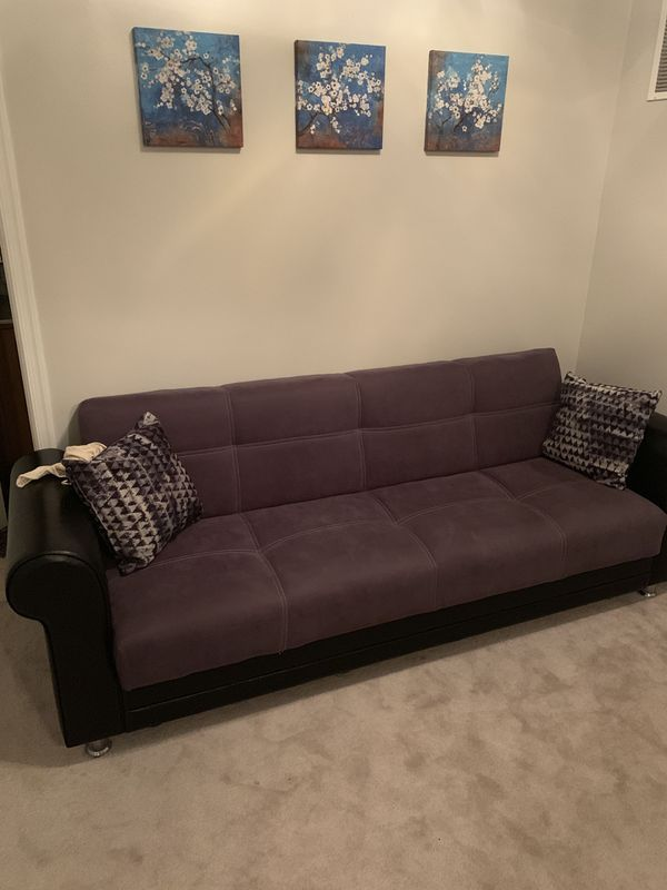 Pull Out Couch with Storage