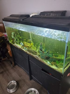 55 gal fish tank for Sale in Lakeside, CA
