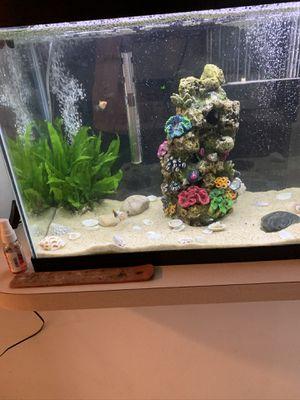 Aquarium for sale for Sale in Cartersville, GA