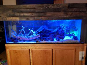 150 Gallon Fish Tank-Premium Decor for Sale in Las Vegas, NV