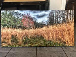 Canvas Photo Print for Sale in Spring Hill, FL