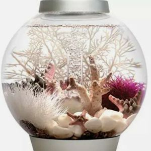 Oase Biorb Classic 15 Aquarium Kit for Sale in Mansfield, OH
