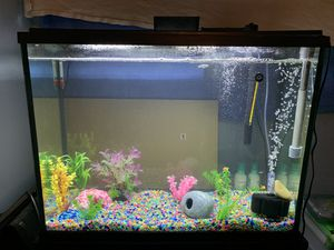 37 Gallon fish tank for Sale in Staten Island, NY