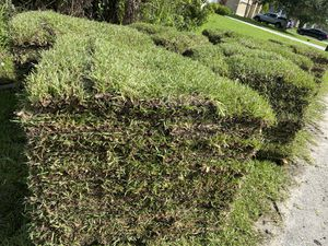 SOD SOD ST AUGUSTINE WE DELIVER AND INSTALL for Sale in Melbourne, FL