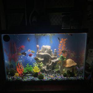 20 Gallon Fish Tank for Sale in Lynnwood, WA