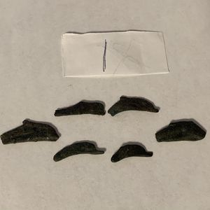 Ancient Greece Coins Lot Of 6 Olbia Dolphin 5th Century BC Bronze (1) for Sale in Modesto, CA