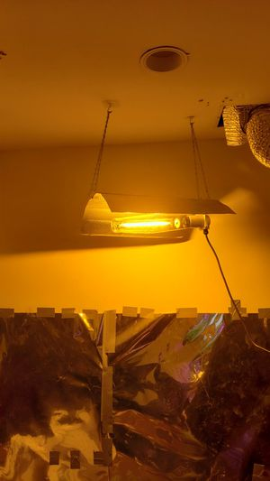HPS and metal hallide grow light with ballast for Sale in Philadelphia, PA