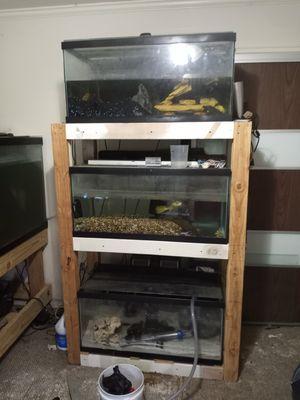 Aquariums for Sale in Spring, TX