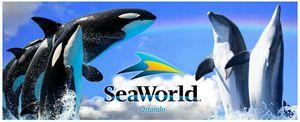 SEA WORLD TICKETS for Sale in Orlando, FL
