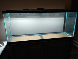 55 Gallon Fish Tank With Stand for Sale in North Riverside, IL