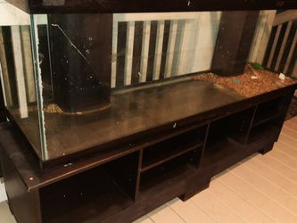 Large Fish Tank for Sale in Zephyrhills,  FL