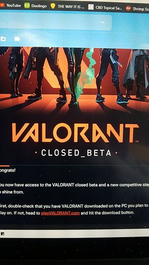 Riot Accounts with Valorant Closed Beta Access for Sale in Cinnaminson, NJ