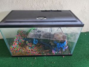 Fish tank for Sale in Le Roy, MI