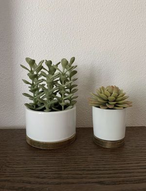 Succulent plant decor for Sale in Portland, OR