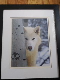 12 1\2 X 15 1/2 Picture Frame for Sale in Colorado Springs,  CO