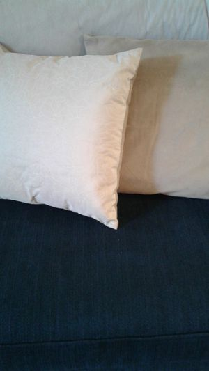 Sofa,bed pillows for Sale in Appleton, WI