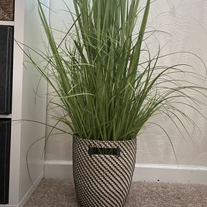 6 ft Tall Faux Grass Plant With Planter/Basket for Sale in Silver Spring, MD