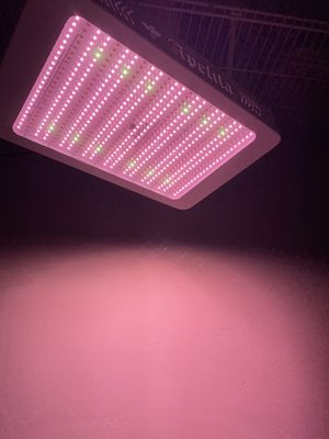 Indoor grow light (brand new) $200.00 for Sale in San Diego, CA