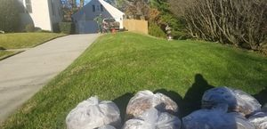 Fall clean up & Landscape for Sale in Alexandria, VA