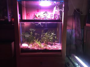 300w led Grow light full spectrum UFO style for Sale for sale  Colorado Springs, CO