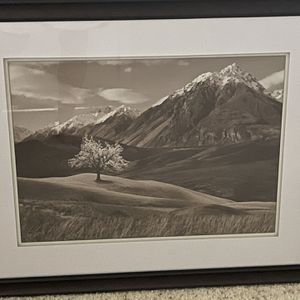 Framed, Double Matted Print 31x 25.5 for Sale in Renton, WA