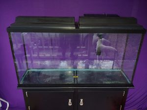 Full 55 Gallon Aquarium setup 48*12*24 for Sale in Clearwater, FL