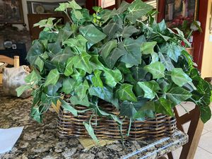 Large fake green plant in basket for Sale in Kingsburg, CA