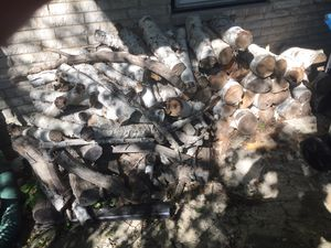 Free firewood for Sale in Chicago Heights, IL