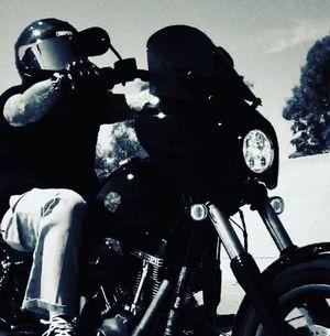 LowRider S FXDLS Harley Davidson for Sale in Upland, CA