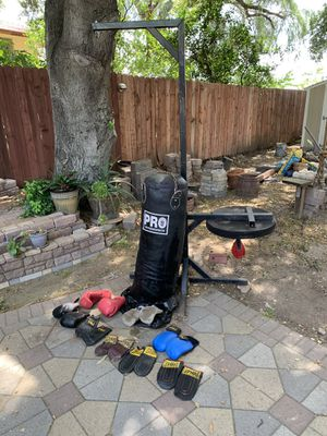 Boxing equipment, punching bag and speed bag with 8 pair of gloves. for Sale in Altadena, CA