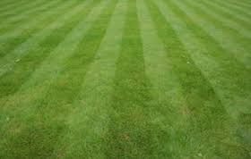 Grass Cutting for Sale in Georgetown, DE