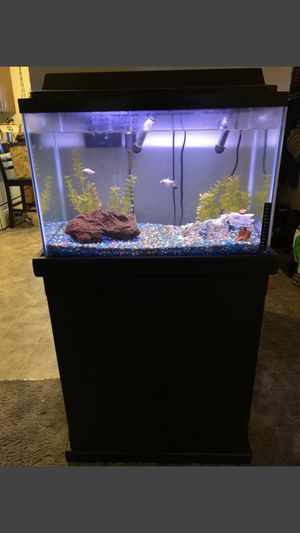 30 Gallon fish tank for Sale in Springfield, OR