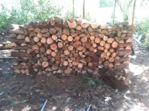 Firewood 1/2 cord $70 for Sale in Aberdeen, WA
