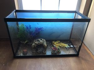 29 gallon fish tank with decorations for Sale in Clayton, MO