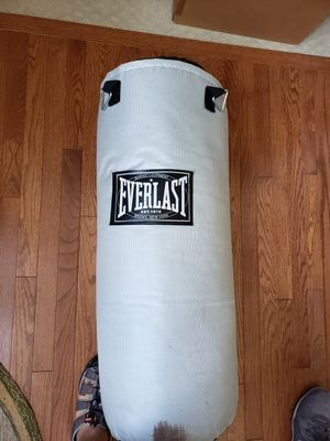 Hardly used Everlast Punching bag - $25 for Sale in Aldie, VA