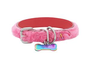 Ashley Williams Dog Collar & Leash xs/small for Sale in Washington, DC