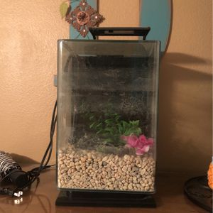 5 Gallon Fish Tank Free for Sale in Corona, CA