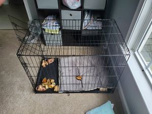 Dog crate for Sale in Yancey Mills, VA