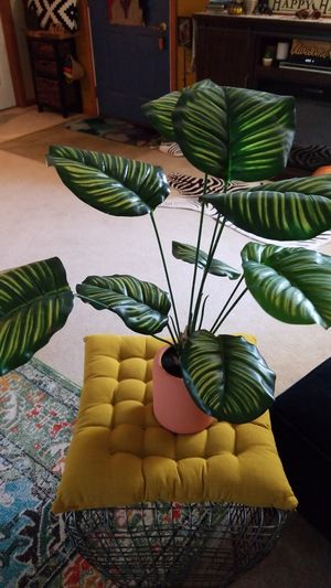 Project 62 calathea plant faux new with tags for Sale in Sheffield, OH